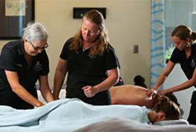 Health Professions, Fitness and Wellness